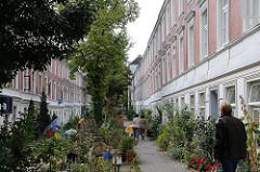 Idyllisches Wohnen in Hamburg - Terrassenhaeuser Falkenried - Blumen und Grünpflanzen vor den zweistöckigen Häusern