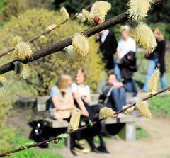 Blühende Kätzchen in Planten un Blomen - ParkbesucherInnen sitzen auf einer Parkbank in der Sonne - ander gehen auf den Wegen der citynahen Anlage spazieren.