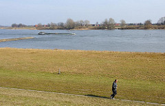 Wiesen am Ufer der Elbe - ein Binneschiff fährt Richtung Schleuse Geesthacht - ein Jogger läuft am Deich.