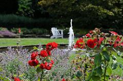 Wasserfontäne und Brunnen mit roten Rosensträuchern im Rosengarten - Stadtpark Hamburg Winterhude.