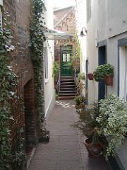 Häuser in Finkenwerder - grün bewachsene Hausfassaden - schmale Gänge.