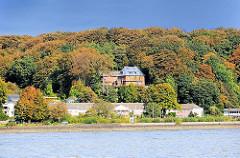 Herbstwald am Ufer der Elbe - am Ufer das ehem. Kurhaus.