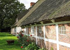 Mit Ziegeln gefülltes Fachwerk - Balken geweisst; Reetdachhaus mit Rosensträuchern an der Hauswand.