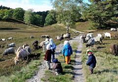 Kinder beobachten die Herde Heidschnucken und Ziegen in der Fischbeker Heide.