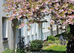 Hauseingänge unter blühenden Zierkirschen - Wohnblock Koldingstrasse - Architekturbilder aus Hamburg Altona.