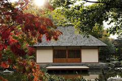 Japanischer Pavillon in Planten un Blomen -  Herbst in Hamburg St. Pauli - herbstlich rot gefärbte Ahornblätter.
