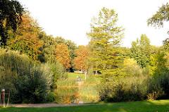 Dicht bewachsener Tümpel im Zentrum des Eppendorfer Parks - im Hintergrund rot und gelb gefärbte Herbstbäume - Motive aus den Stadtteilen Hamburgs Bilder aus Hamburg Eppendorf.