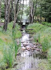 Raakmoorgraben im Hamburger Naturschutzgebiet Raakmoor - der Grabenverlauf ist renaturisiert worden, Schilf und Gräser wachsen am Grabenrand; Steine reduzieren die Geschwindigkeit des Wasserlaufs. Im Hintergrund die Stauanlage zum Raakmoorteich.