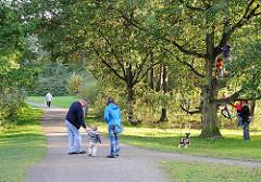 Spazierweg am Jenfelder Moor - Kinder klettern im Baum.