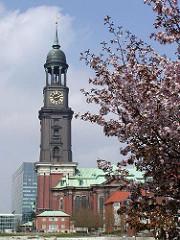 Frühling in Hamburg - die Japanische Kirsche blüht auf dem Platz vor der St. Michaeliskirche. Kirchblüte in Hamburg.
