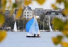 Blick durch Herbstblätter über die Aussenalster Richtung Hamburg St. Georg, Strasse An der Alster; Segelboot mit blauem Spinaker  in Fahrt.