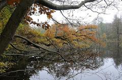 Parks in Hamburg Teetzpark am Alsterlauf - herbstliche Bäume am Wasser.