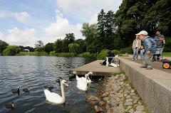 Schwäne am Kanuanleger des Hamburger Stadtparks.