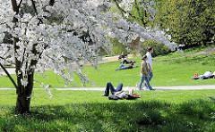 Liegewiese im Frühling in Planten un Blomen - BesucherInnen der Grünanlage im Zentrum der Hamburger City liegen in der Sonne auf der Wiese oder gehen auf den Wegen spazieren.