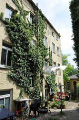 Wohnhäuser an der Elbtreppe - Wäsche auf der Leine - Efeu wächst an der Hausfassade.