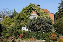 Efeubewachsenes Wohnhaus Hamburg Duvenstedt Trilluper Weg