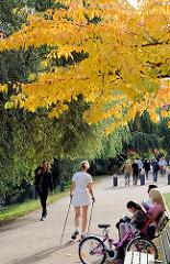 Sonniger Herbsttag in Hamburg - Alsterspaziergang in HH-Rotherbaum; Fotos aus den Hamburger Stadtteilen.