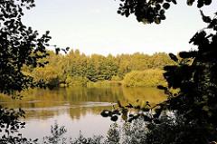 See mit dichtem Baumbestand am Ufer - Bilder vom Naturschutzgebiet Höltingbaum / Stellmoorer Tunneltal am Rande der Hansestadt Hamburg, Stadtteil Rahlstedt.
