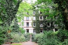 Mit Efeu bewachsene Baustämme und Hausfassaden in Hamburg Eimsbüttel.