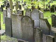 Grabsteine auf dem Jüdischen Friehof an der Königsstrasse.