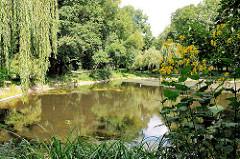 Teich im Hammer Park - Weiden am Teichufer; Fotos aus Hamburg Hamm.