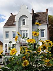 Gelbe Blumen in einem Vorgarten in Hamburg Rahlstedt. Mehretagen-Gründerzeitgebäude.