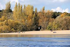 Herbst am Hamburger Elbufer - herbstlich gefärbte Bäume am Elbhang; Spaziergänger am Sandstrand in der Sonne.