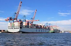 HHLA Containerterminal Tollerort in Hamburg Steinwerder - Containerfrachter unter den Containerbrücken.