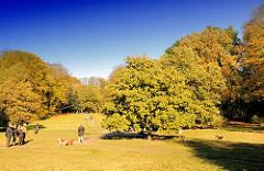 Hundespielwiese im Niendorfer Gehege - eingesäumt vom Herbstwald; Grünanlagen und Parks in der Hansestadt Hamburg.