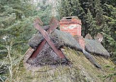 Giebel eines Reetdachhauses - Ziegelschornstein und Pferdeköpfe als Giebelschmuck - Neulaender Elbdeich.