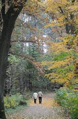 Spaziergänger im herbstlichen Park - Laub auf dem Weg im Teetzpark.