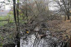 Das Flüsschen Saselbek verläuft durch die Volksdorfer Teichwiesen.