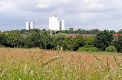Weite Wiese in Hamburg Langenbek - hohes Gras und Bäume - Grünanlage im Stadtteil; im Hintergrund Hochhäuser von Hamburg Sinstorf.