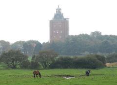 Grasende Pfere auf einer Weide, Leuchtturm Hamburg Neuwerk im Dunst.