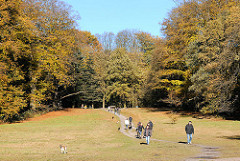 Grosse Wiese in dem Niendorfer Gehege - SpaziergängerInnen auf dem Weg; hohe Bäume in herbstlichen Farben säumen den Platz.