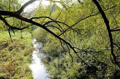 Lauf der Alster in Hamburg Duvenstedt - schmaler Flusslauf, Weiden am Ufer.