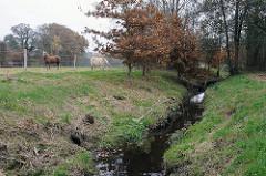 Flüsse in Hamburg ländliche Gegend in Hummelsbüttel - Pferde auf der Wiese - Susebek am Susebekweg.