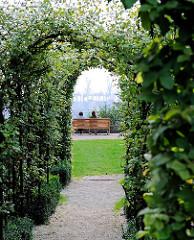 Blick durch die Arkadenhecke, die von Buchen im Rosengarten gebildet wird - von einer Bank am Rande des Elbbergs können die Besucher auf die Elbe und den Hamburger Hafen blicken.