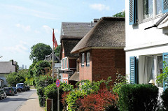 Wohnhäuser an der Strasse in Hamburg Blankenese - Vorgärten.
