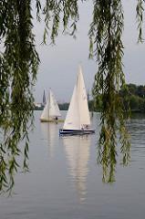 Blick durch die herabhängenden Zweige einer Weide auf zwei Segelschiffe auf der Aussenalster.