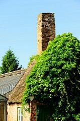 Schornstein eines Treibhauses - mit Kletterpflanzen bewachsenes Dach einer Kate in HH-Curslack.