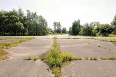 Betonstrasse auf dem ehem. Hambuger Truppenübungsplatzes Höltingbaum - Gras und Wildkraut / Unkraut wächst in den Ritzen der Strasse, die durch das jetzige Naturschutzgebiet führt.