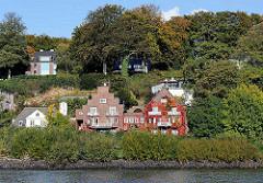 Wohnhäuser am Ufer der Elbe - die Fassade eines Klinkergebäudes ist mit wildem Wein mit roten Herbstblättern bewachsen.