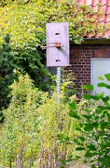 Verlassenes Gebäude in HH-Gut Moor - mit hohem Wildkraut bewachsene Sportanlage - Basketballkorb ohne Netz.