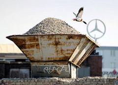 Schütte, Lager mit Baustoff - Steinen am Billehafen von Hamburg Rothenburgsort - eine Brandgans fliegt auf.