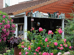 Vorgarten im Hamburger Stadtteil Langenbek - Rosenbüsche blühen; Vogelhäuser stehen auf einem Sims.