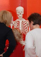 Kindermuseum Hamburg Osdorf - Kinder betrachten mit ihren Müttern ein Skelett.