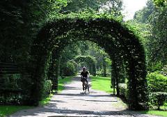 Grünanlage an der Bebelallee - eine Fahrradfahrerin fährt durch die Buchenbogen - Winterhuder Fotos.