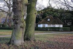 Bäume und Herbstlaub im Hambuger Jensichpark - Pfoertnerhaus mit Reet gedeckt. Bilder aus den Hamburger Stadtteilen / Stadtteil OTHMARSCHEN.