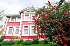 Historische Architektur Hamburgs - Stadtvilla erbaut 1904 am Ufer des Seevekanals - Rotdorn mit roten Früchten.